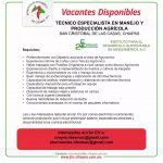 Fomento Económico en Chiapas
